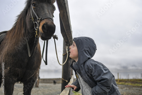 Close up of adorable young boy staring at the nose of a beautiful Icelandic horse in a stable in Akureyri, Iceland Wallpaper Mural