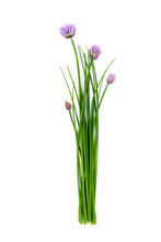 Fresh Green Chives, Garden Herbs, With Their Purple Flowers Isolated Against A White Background.