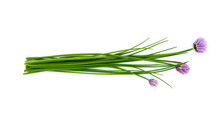 Fresh Green Chives, Garden Her...