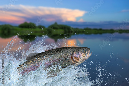 Foto Fishing. Rainbow trout fish jumping with splashing in water