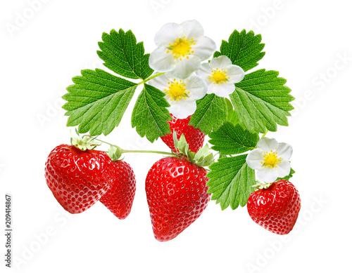 freshness ripe srawberries on white background
