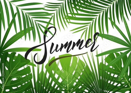 Ingelijste posters Tropische Bladeren Summer. Tropical background with exotic palnts. Banner for summer sale, promotion, party events