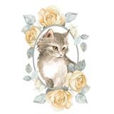 Cat. Cute kitten and roses. Watercolor illustration - 209446803