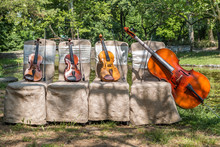 Music And Nature Concept. String Instruments, One Cello And Three Violins On The Ceremonial Chairs In Nature, In Front Of Forest Wooden Bridge