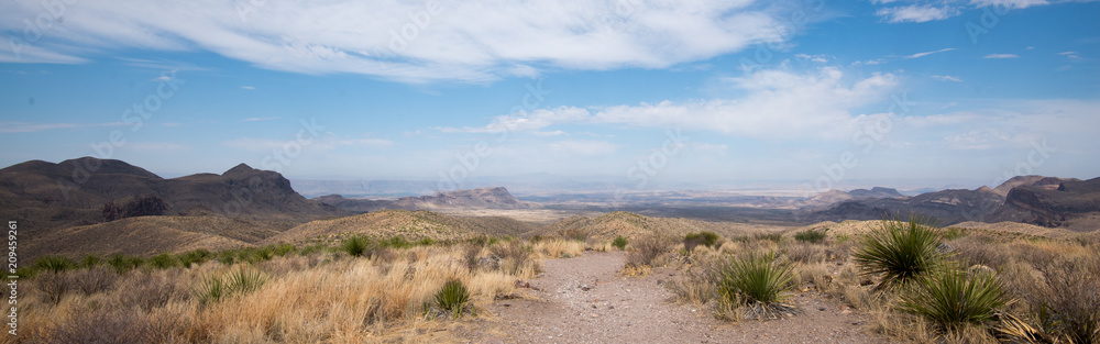 Fototapety, obrazy: View from Sotol Vista, Big Bend National Park, Texas