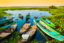 Alone Beautiful Colorful Boats On Lake, Lotus Farm, Phnom Krom, Cambodia
