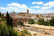 Malaga cityscape with Roman Theater and Cathedral on the background