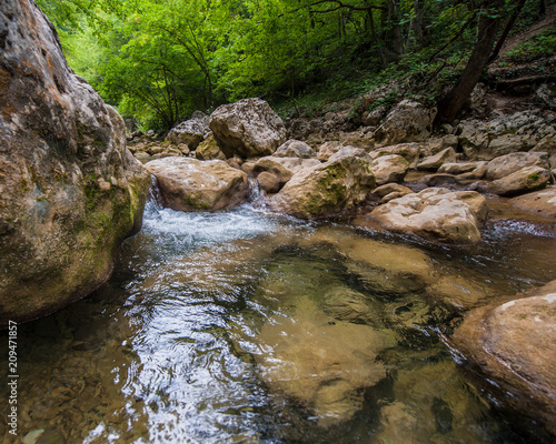 Foto op Plexiglas Rivier Landscape - forest, rocks and mountain river.