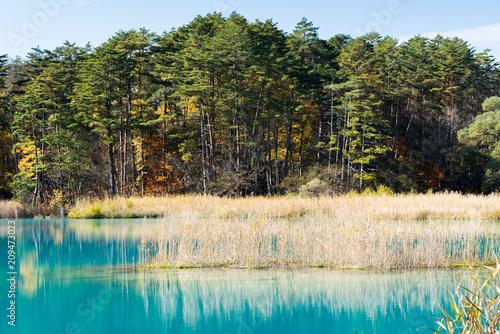 Foto op Canvas Asia land Goshiki-numa Urabandai Fukushima Autumn Japan