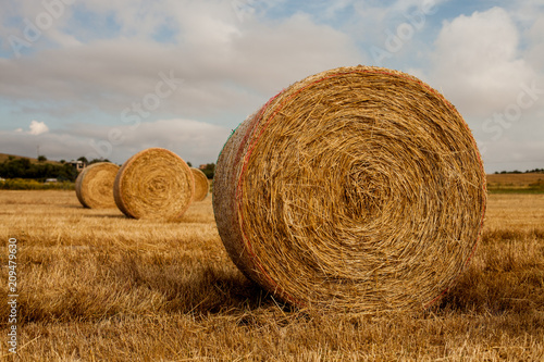 Fotobehang Platteland Wheat field after harvest with straw bales at sunset