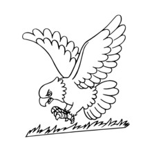 Eagle Cartoon Illustration Isolated On White Background For Children Color Book