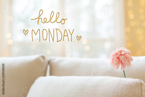 Hello Monday message with a flower in a bright interior room sofa Wallpaper Mural