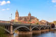 View on the New Cathedral from the bank of the Tormes River, Salamanca, Castile and Leon, Spain.