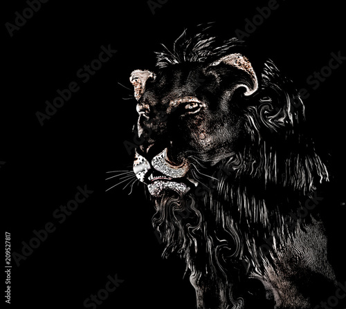 Staande foto Afrika Abstract Lion at black background