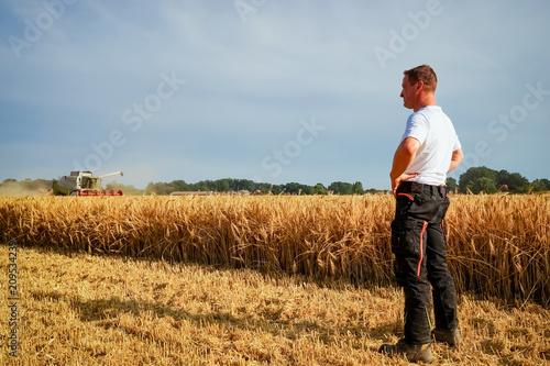 Fényképezés  Getreideernte - trockener Sommer, Landwirt beobachtet Mähdrescher voller Sorge