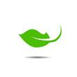 leaf logo concept