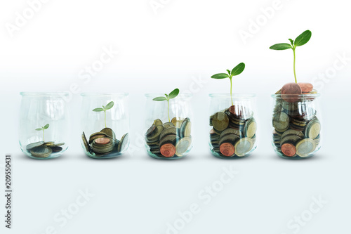 Cuadros en Lienzo Money growing concept with green plant growing progressive from glass jar with c