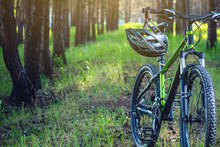 Sports Helmet On A Green Mountain Bike In The Park. Concept Protection During Active And Healthy Lifestyle
