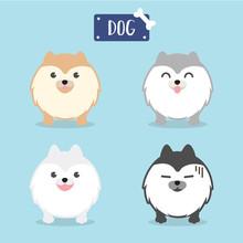 Cute Fluffy Dog . Cartoon Character Pomeranian Dog.