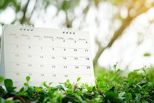 Close Up Of Calendar On Green Nature Background With Copy Space, Planning For Business Meeting Or Travel Planning Concept
