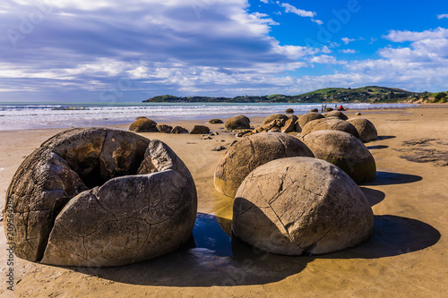 Boulders Moeraki - large spherical boulders Wallpaper Mural