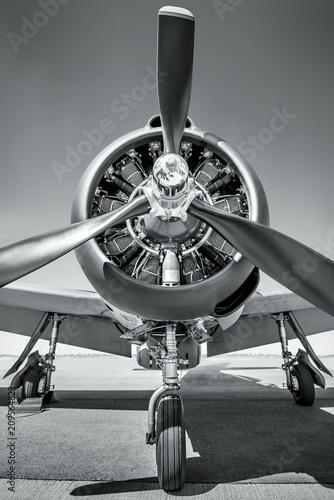 Canvas Print propeller of an sports plane