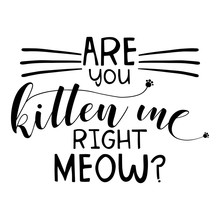 Are You Kitten Me Right Meow? Funny Saying In Isoltated Vector Eps 10 On White Background.