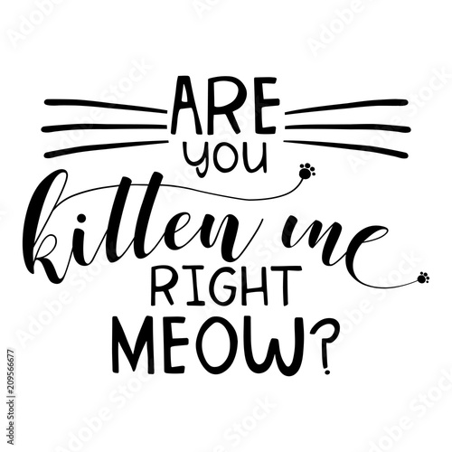 Canvas Print Are you kitten me right meow? funny saying in isoltated vector eps 10 on white background