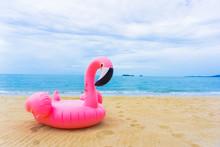 Flamingo Raft On The Beach In ...