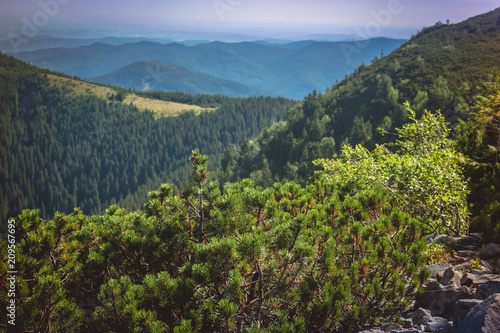 Tuinposter Blauwe jeans Beautiful mountains and blue sky in the Carpathians. Ukraine.