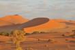 canvas print picture - Düne beim Sonnenaufgang in rotem Licht und Schatten