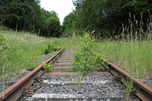 Photo sur Toile Voies ferrées Totes Gleis - Stockfoto