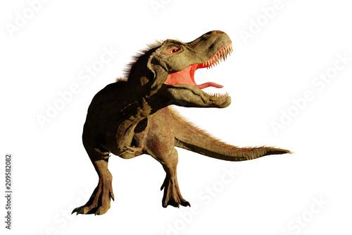 Fototapeta  Tyrannosaurus rex roaring,  T rex dinosaur (3d rendering isolated on white backg