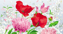 Red, Pink And White Spring And Summer Flowers Vector Background