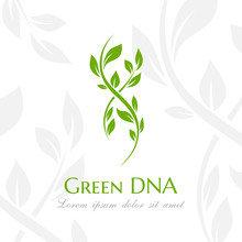 Dna Spiral With Green Leaves. Vector Illustration.