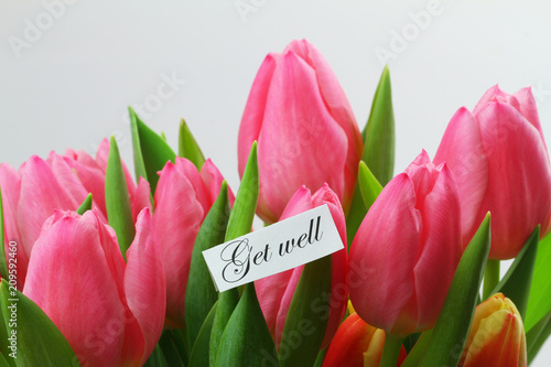 Fényképezés  Get well card with pink tulips on white background