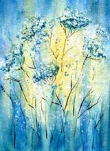 Yarrow Flowers Field
