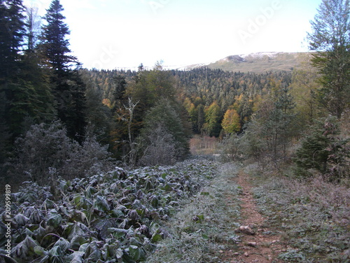 Tuinposter Grijs mountains, highlands, alpine meadows, autumn in the mountains, rocks, nature, landscape,