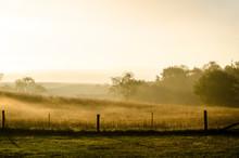 Golden Sunrise In Rural Pennsylvania