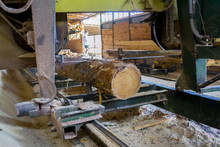 Sawmill. Process Of Machining ...