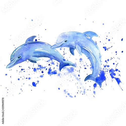 Fototapeta premium Akwarela raster delfinów. Zwierzęta podwodny świat rastrowy.