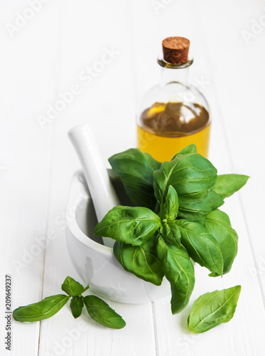 Cuadros en Lienzo Fresh green basil and olive oil