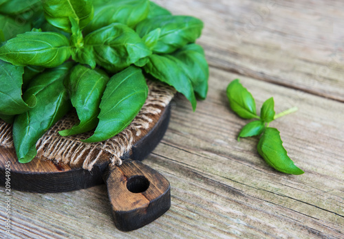 Fotobehang Aromatische Fresh green basil