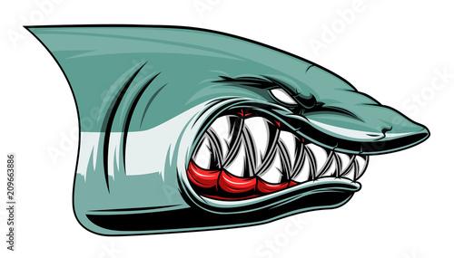 Cuadros en Lienzo Angry shark head colored