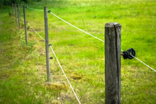Electric Fence Around Farm  / Horse Paddock. Copy Space For Text.