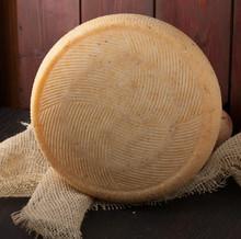 Mature Caciotta Cheese