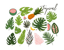 Hand Drawn Vector Abstract Cartoon Summer Time Graphic Illustrations Art Collection Set With Exotic Tropical Palm Tree Leaves And Watermelon,banana And Pineapple Fruits Isolated On White Background