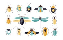 Bundle Of Different Colorful Geometric Insects With Wings And Antennas Isolated On White Background - Bugs, Beetles, Firefly, Ladybug, Cricket. Cartoon Vector Illustration In Modern Flat Style.
