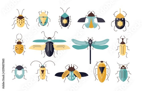 Bundle of different colorful geometric insects with wings and antennas isolated on white background - bugs, beetles, firefly, ladybug, cricket Fotobehang