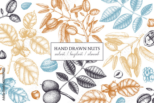 Vector design with hand drawn nuts sketches Fototapeta